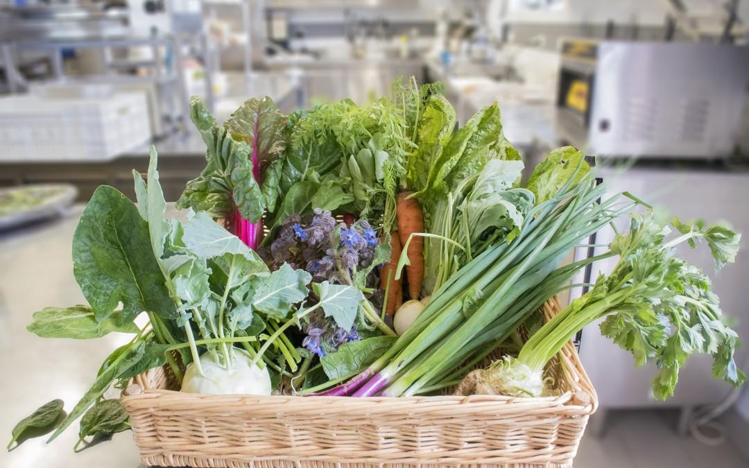 Réception des légumes bio au petit matin en cuisine