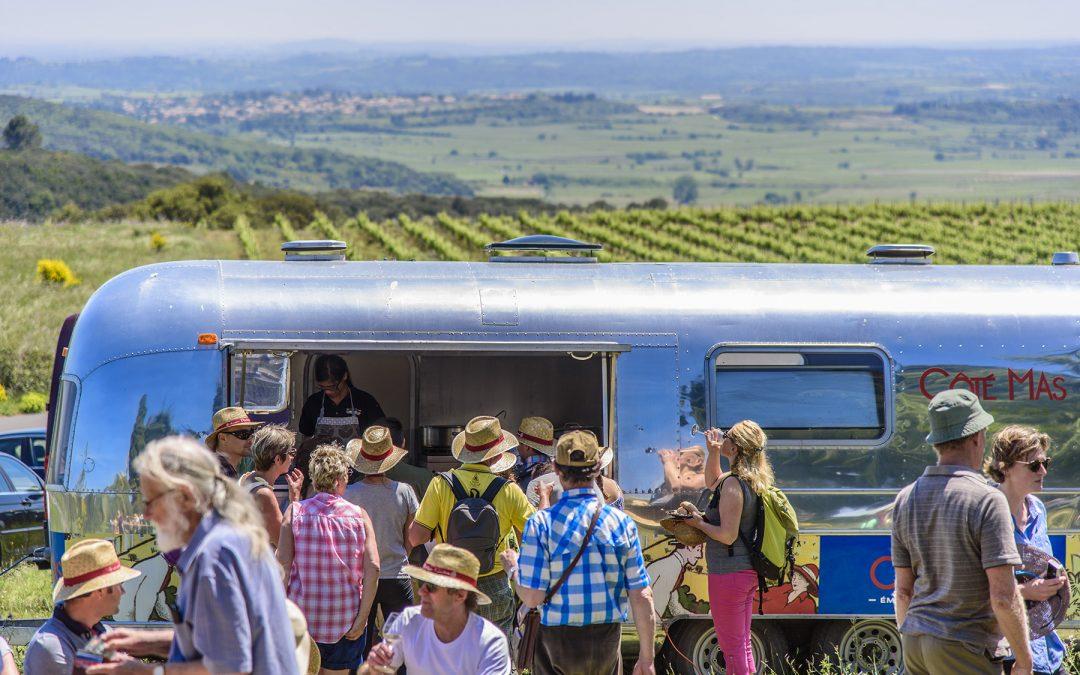 Vins, Vignes et Terroir, balade gastronomique en pays de Pézenas